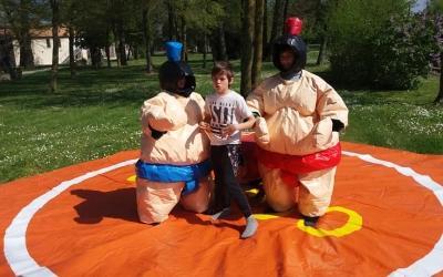 Costume Sumo